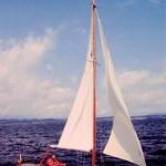 Boot: Segeljacht Pamir